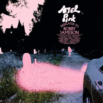 Ariel Pink, recensione Dedicated to Bobby Jameson
